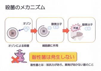 オゾン水による殺菌・脱臭・脱色・鮮度保持システム